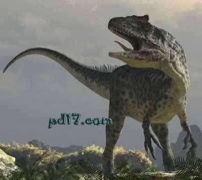 侏罗纪时代的陆地霸主:蛮龙