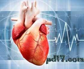 近似科幻的医学技术Top3:3D打印心脏