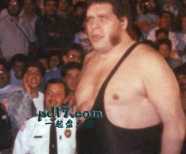 历史上知名的摔跤手Top3:安德烈巨人